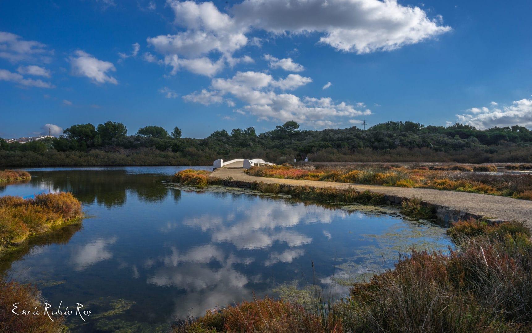 Studietur Valencia L'Albufera Natural Park