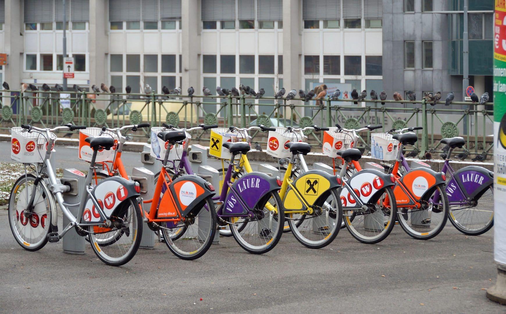 Bike Studietur Wien