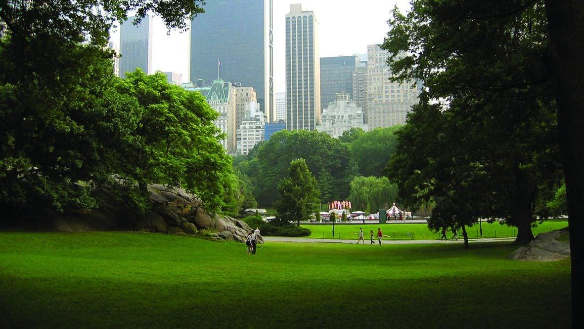 Studietur New York Central Park
