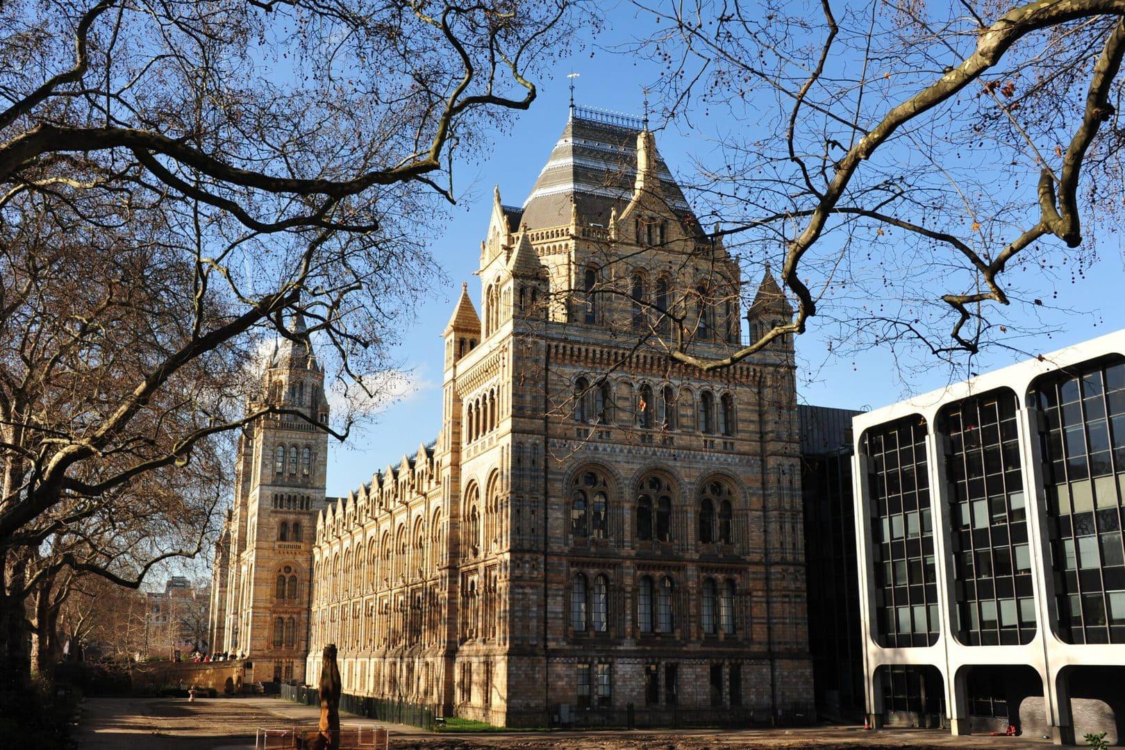 Studietur London Natural history museum