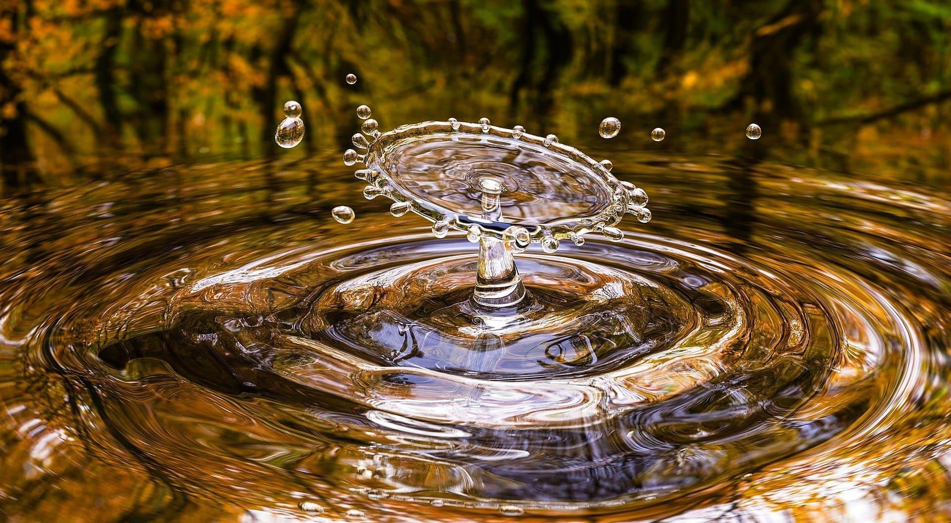 Rensningsanlæg_vand_studierejser