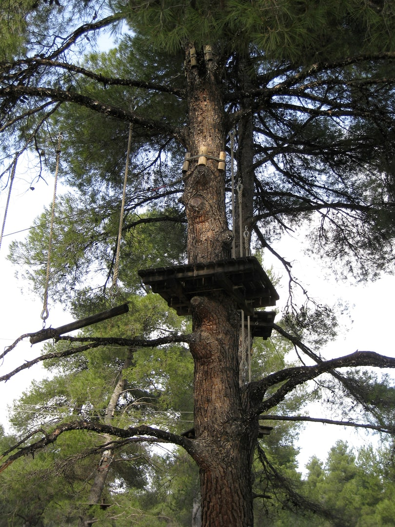 Helsinki_Treetop adventure