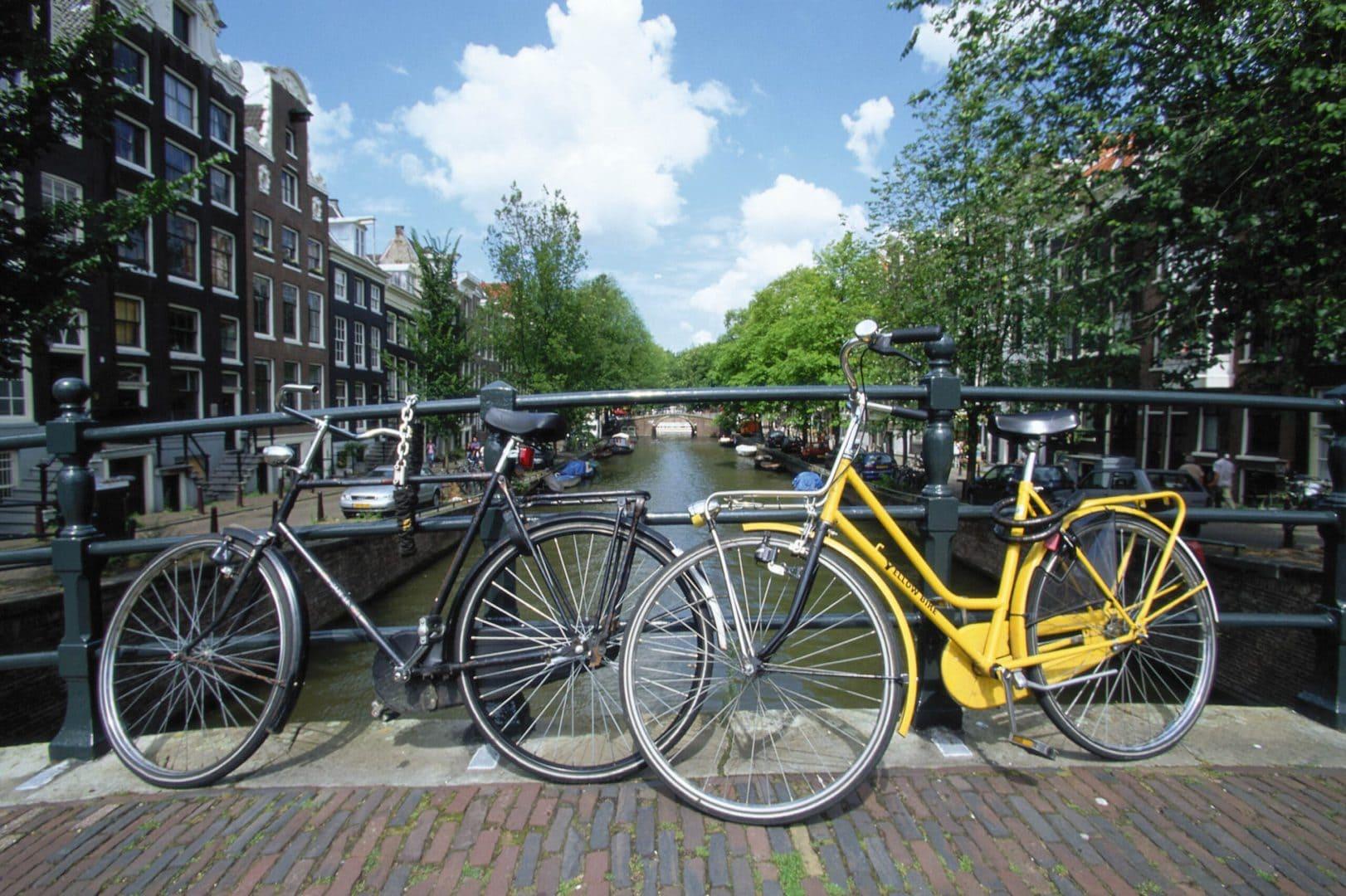 Studietur Amsterdam cykeltur