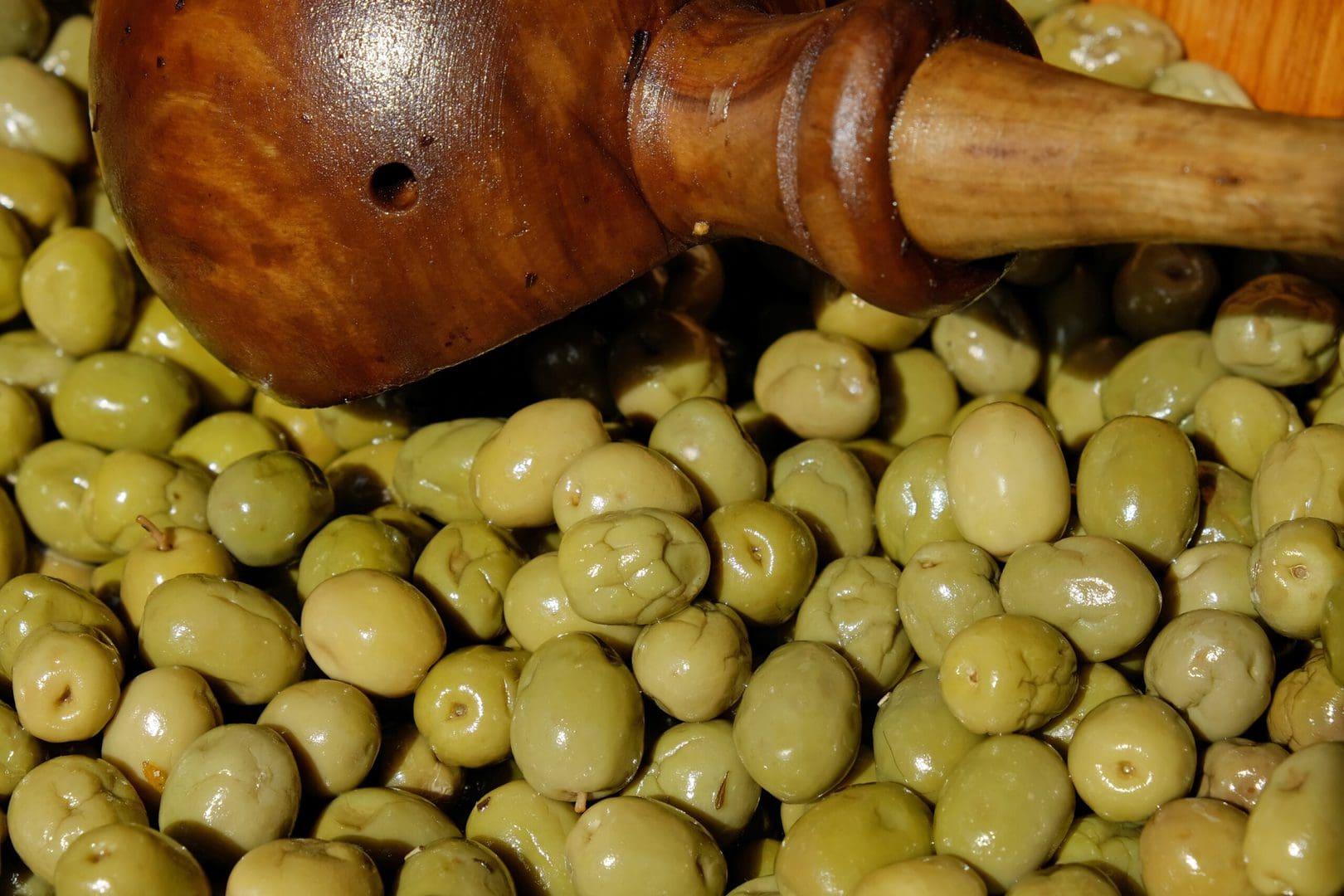Studietur Sevilla Oliven
