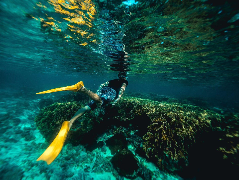Snorkling-på-malta-dykker-studierejser
